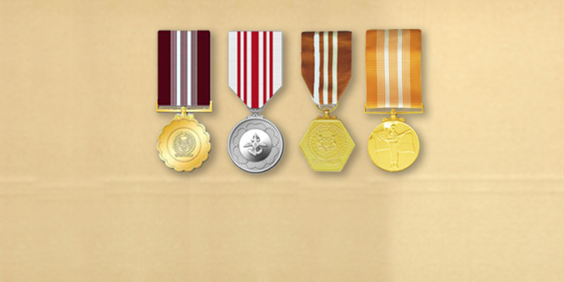 SAF Service Medals available for all NSmen
